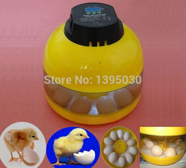 New Egg Candler Poultry Hatcher Chicken Goose Quail Duck 10-Egg Mini Egg Incubator JANOEL-10<br>