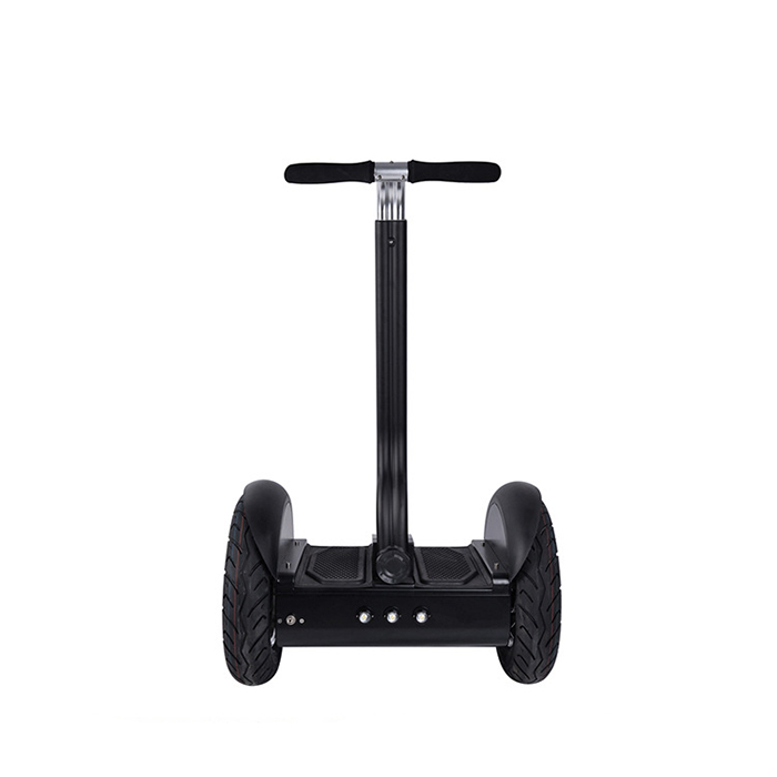 self balance electric chariot (6)