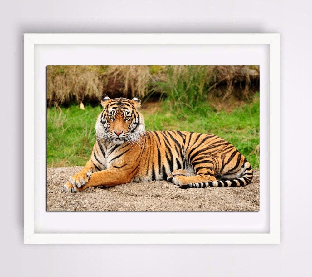 Алмазная вышивка бенгальские тигры 2