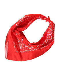 Hot Sale New Fashion Woman Small Silk Scarf Square Scarves Women Wraps Winter Autumn Ladies Shawls 50x50CM#LREO(China)