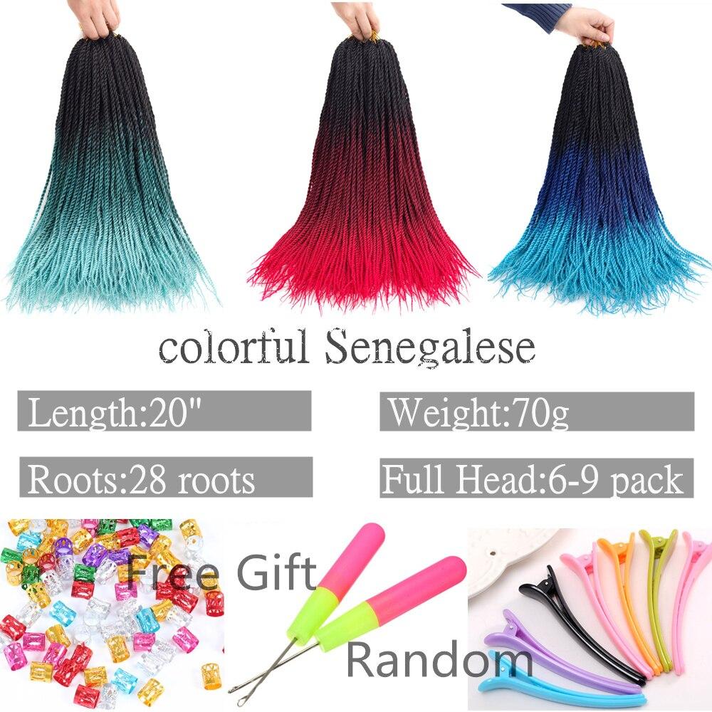 color braids 0018 (2)