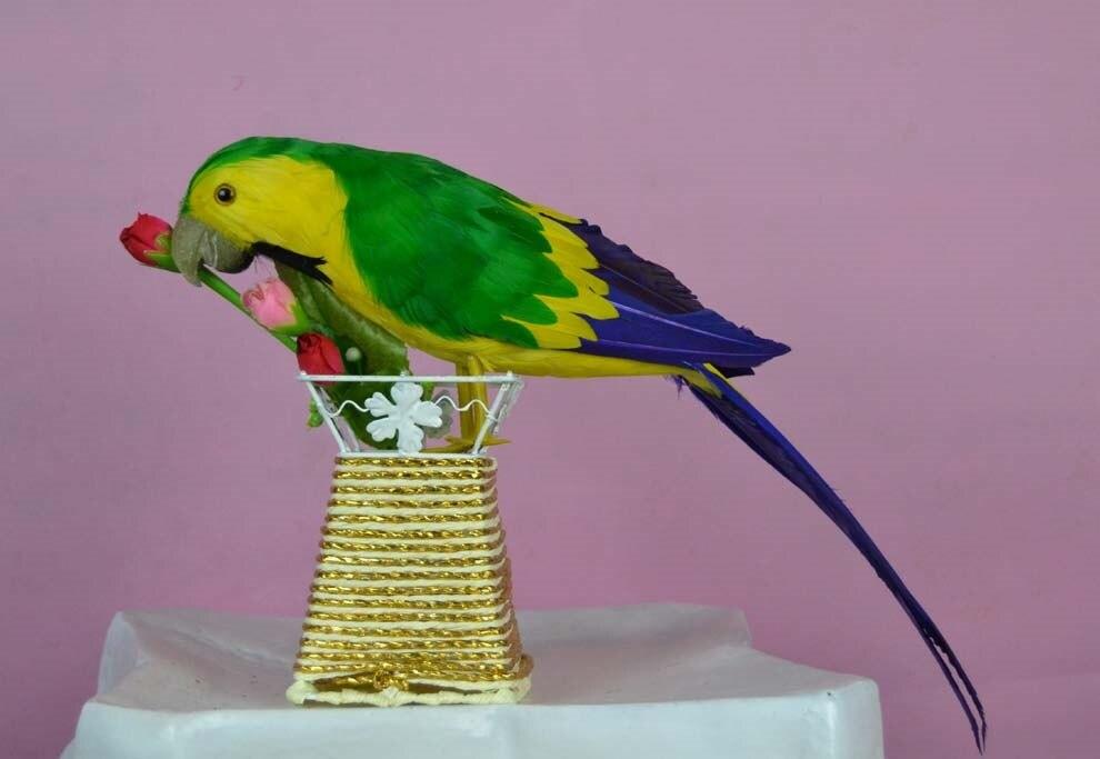 Поделка из перьев попугая 93