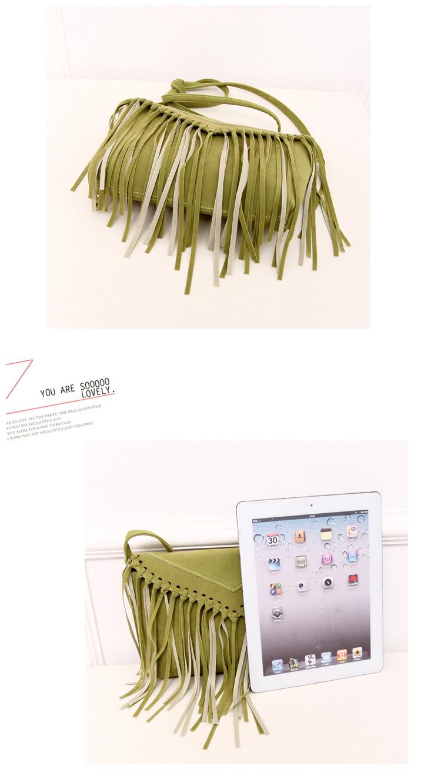 women bag fringe tassel bags (15)