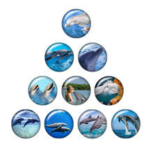 Beauty Starfish dolphin Shell Seahorse 10pcs mixed 12mm/18mm/20mm/25mm Round photo glass cabochon demo flat back Making findings(China)