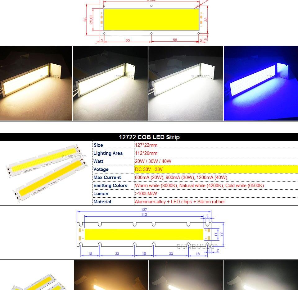 COB LED Strip Light Lamp Bulb 10W 20W 30W 50W Warm Natural Cold White Blue Red Chip On Board LED Matrix Lighting 1-50W (10)