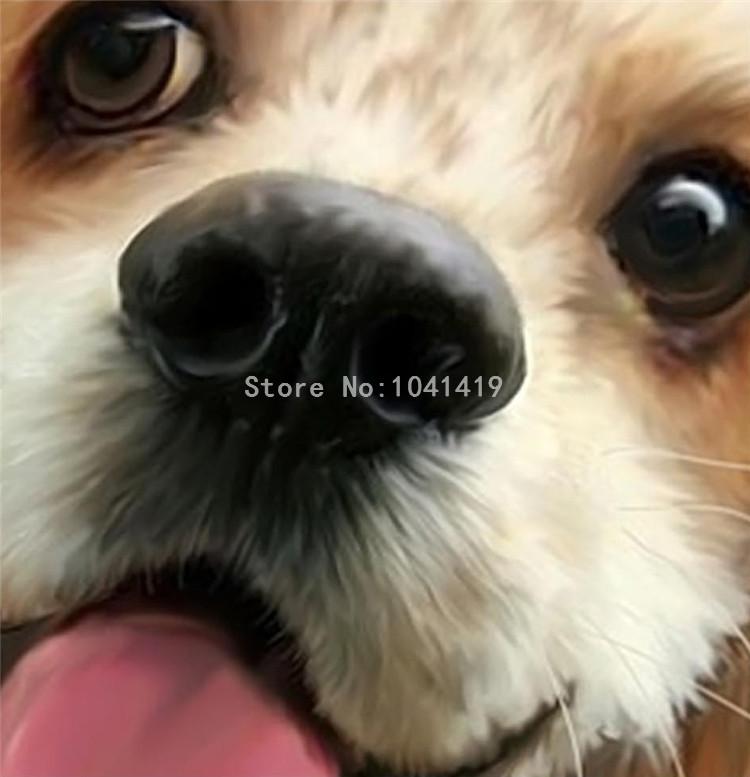 HTB1b.ZhSFXXXXaBXVXXq6xXFXXXm - 3D Cute Dogs Wallpaper For Kids Room-Free Shipping