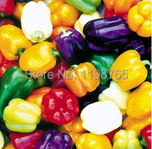 100pcs 6 Color mixed Yellow Puple Red Green Blue White Mix Sweet Bell Hot Pepper Seeds vegetables Paprika(China)