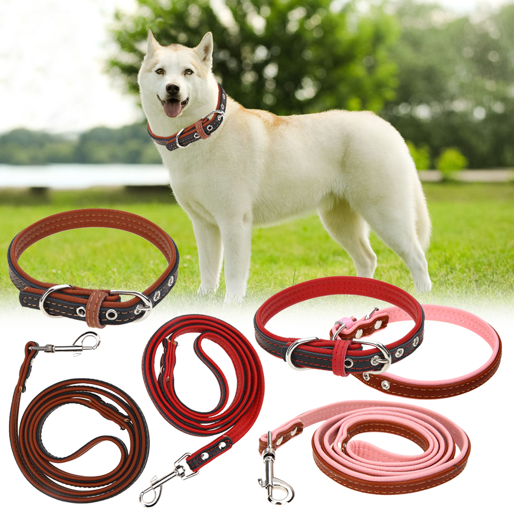 Pet Dog Supplies Embossed Leather Dual Pet Collars Luxury Genuine Leather Pet Dog Lead Leash Collars(China (Mainland))