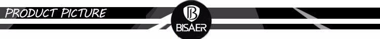 BISAER 2