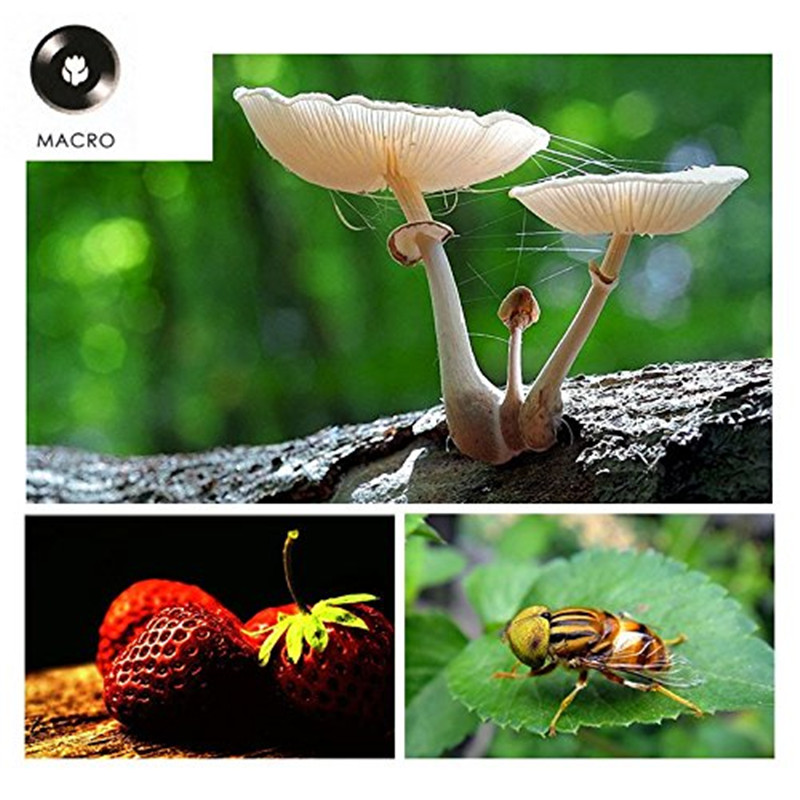 Professional 2in1 0.5X Super Wide Angle Lens 13.5X Super Macro Phone Lens Metal For iPhone 6S Plus SE Smartphone HD Camera Lens 1