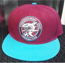 Customize make Snapback hats 50 pcs Per Style Per Color ,Youth Kids hats as Customer Request(China)