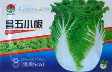 Vegetable seeds Cabbage Seeds northeast Chang five small root pickled cabbage seeds yielding 20 g / bag(China)