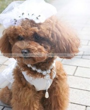 ShanghaiMagicBox Dog Cat Sweet Wedding Bride White Veil Flower Halloween Puppy Clip 40515339(China)