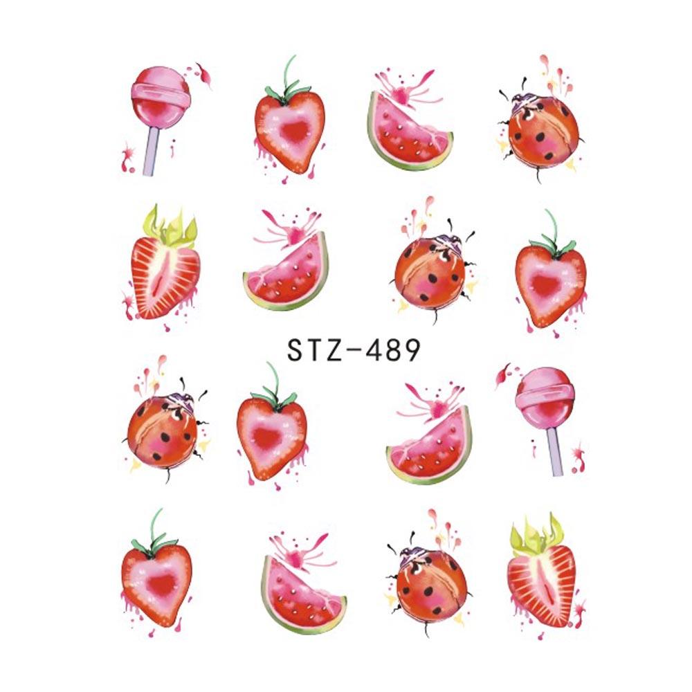 STZ489