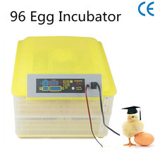 Chicken Egg Incubator Hatcher Automatic Egg Incubator Hatching Machines Turner Candler Fan Kit Circulated Combo DL-96A