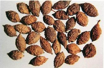 1kg  10:1 Alpinia oxyphylla extract Sharpleaf Galangal Fruit Extrac<br><br>Aliexpress
