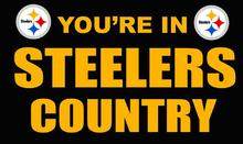 Pittsburgh Steelers you're in country Flag 3ft x 5ft Polyester Banner 90x150cm white sleeve with 2 Metal Grommets , 40187(China)