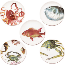 8 Inch Fancy Ocean Ceramic Steak Plate Dish puffer Crab Octopus Fish Seafood Fast Food Tray Family Tableware Christmas Gift(China)