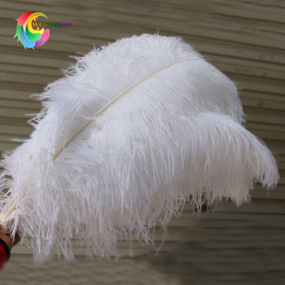 ostrich feather 5