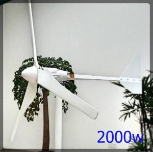 2000w wind turbine 300