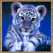 5D Diy diamond painting cross stitch Little Tiger diamond embroidery Animal picture Home Decoration diamond mosaic(China)