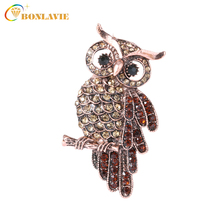 Vintage Owl Brooch Corsage Scarf Clip Crystal Parrots Brooches *Lapel Pin Broches Jewelry Women Lady Sweater Hats Buckles(China)