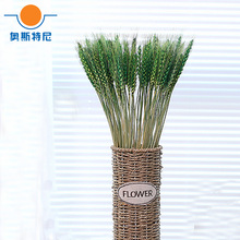100pc natural dried flower bouquets natural green color dried ear of wheat bouquets&wheat ear Bunches