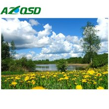 AZQSD 3D Diy Diamond Painting Cross Stitch White clouds Lake Flower Picture Home Decoration Diamond Embroidery Painting BB2810