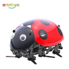 2018 Robot Ladybug Toys DIY Simulate Beetle Electronic Pet Insect Toy Wireless Remote Control Racing Insect Toys for Boys Gift(China)