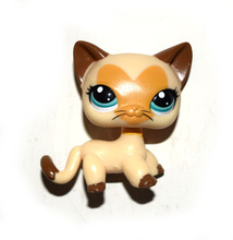 Pet Shop Animal Yellow Brown Short Hair Cat Kitty Doll Figure Child Toy(China)