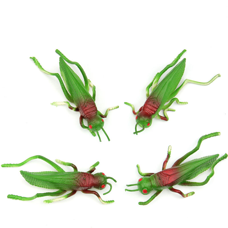 Locust grasshopper Insect model toys soft TPR material tricky early AIDS film props 4PCS/ A LOT(China)