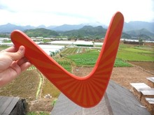 5 PCs wooden V shape Boomerang outdoor toys/ Kids Child professional Frisbee flying disc sports game, free shipping(China)