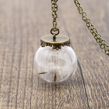 Trendy Natural Dandelion Best Wish Bottle Necklace For Women Glass Dome Cover Maxi Necklace Jewelry Women Best Gifts 620240