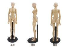 sketch cartoon drawing female mannequin model plastic massage model free shipping