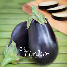 50pcs Heirloom Black Beauty Eggplant Seeds Organic Vegetable NON GMO outdoor plant Vegetable Seeds Home Garden DIY