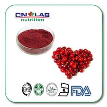 Pure Natural Cranberry Extract,Oxycoccos Extract Proanthocyanidins 25%(China)