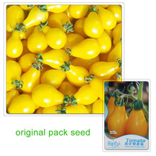 35 Seeds/Pack,Yellow Pear Tomatoes Seeds, Fruit Beauty Tomato Vegetable Seeds