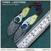 TUREN-Leiothrix 58HRC Handmade Damascus pocket knife verdant tinged cow bone and abalone shell handle(China)