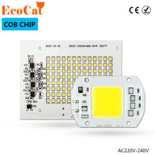 ECO CAT Smart IC LED Lamps Chip led bulb 220V 5W 10W 20W 30W 50W 90W Cold White/Warm White For Outdoor FloodLight(China)