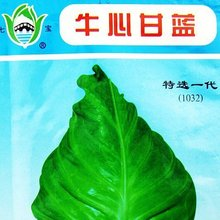 Free shipping/Min 15 usd/ Beef heart type cabbage seed 15g seeds bovine vegetable seeds