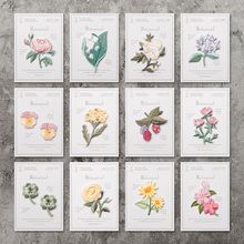 Iron On Patches Sew On DIY Craft Accessory /Japanese Embroidered Lily rose Hydrangea Raspberry Clover Narcissus sunflower sakura