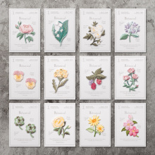 Iron On Patches Sew On DIY Craft Accessory /Japanese Embroidered Lily rose Hydrangea Raspberry Clover Narcissus sunflower sakura(China)