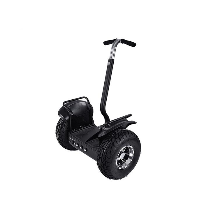 self balance electric chariot (2)