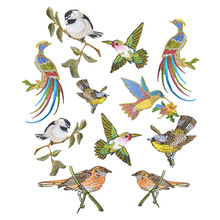 Hoomall 1PCs Bird Patches Stripes Clothing Embroidered Iron-On Applications Patches Applique Stickers For Clothes Badges(China)