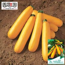 1 Original Pack 8pcs Pumpkin Seeds, speed harvesting Novel Plant vegetable Seed(China)