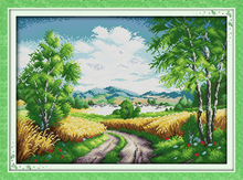Hot Country road scenery DMC home decor canvas Cross Stitch kits 14ct white 11ct print embroidery DIY handmade needlework wall