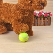 2017 New Pet Dog Tennis Ball Petsport Thrower Chucker Launcher Play Toy Promotion(China)