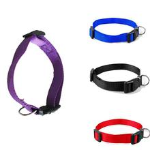 Sale 1 Pc Pet Dog Collars Charming 4 Colors 4 Sizes S-XL Nylon Solid Collar Gift(China)