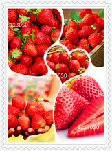 300/bag Giant Strawberry Seeds, Rare, Big as a Peach, Fragaria ananassa L. Maximus Strawberry fruit seeds for home garden(China)