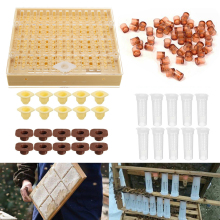 1Set Beekeeping Queen Rearing Cupkit Box Cell Cups Complete Bee Queen Rearing System Beekeeping Case Set